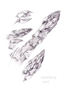 Asupara2011