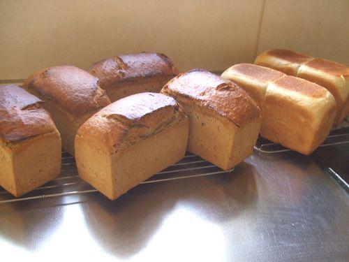 食パンと山型パン